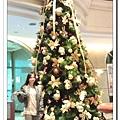 衡陽聖誕樹