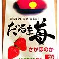 IMAG3523_副本