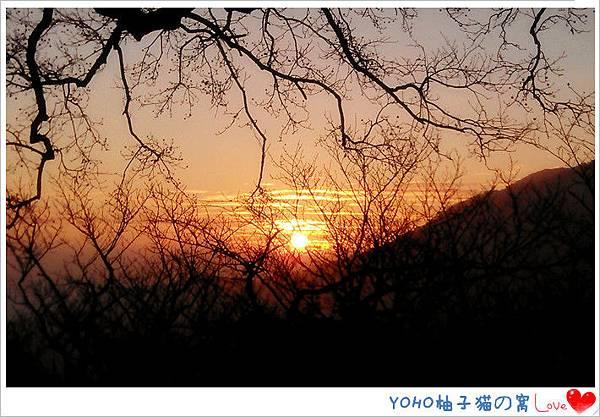 IMAG3905_副本