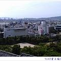 IMAG4782_副本_副本