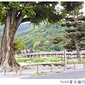 IMAG5068_副本