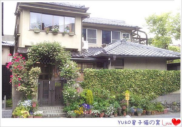 IMAG5054_副本