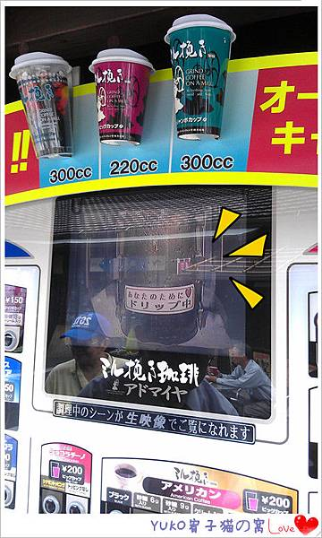 IMAG4882_副本