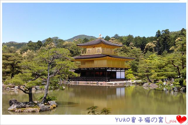 IMAG5170_副本