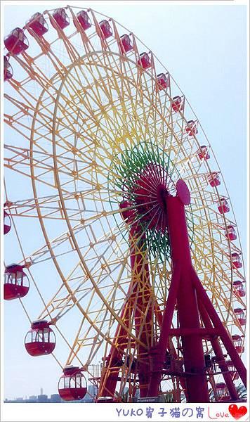 IMAG5406_副本