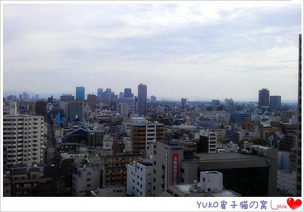 IMAG5559_副本_副本
