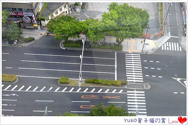 IMAG5560_副本