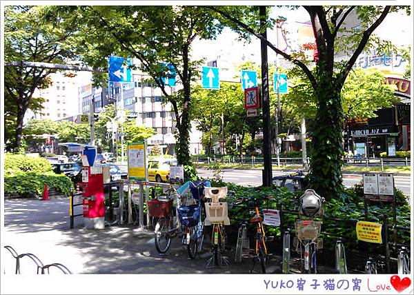 IMAG5571_副本