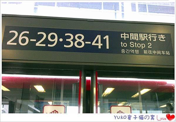 IMAG5583_副本