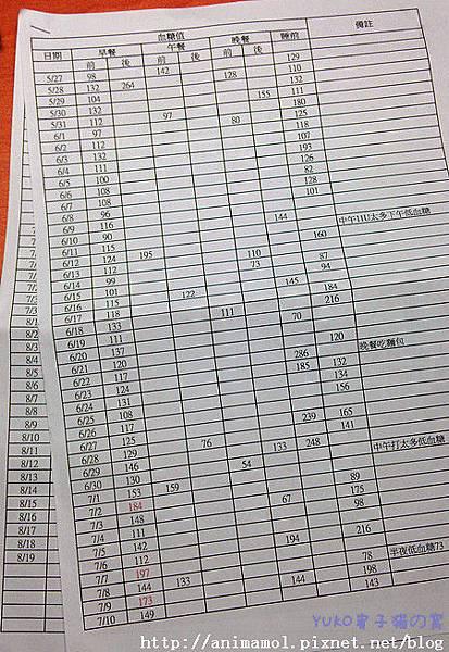 2013.08.19血糖監測表