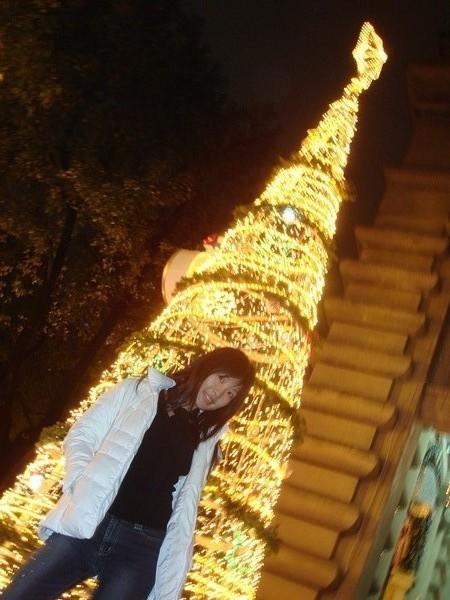 國華銀行前的閃亮亮的叮叮噹樹