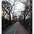 沿著路中央的公園前往住宿處