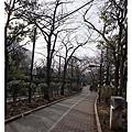 道路中央規畫成公園