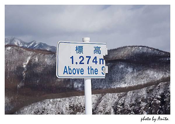 標高1274m