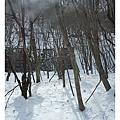 雪景沿途可見