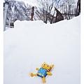 代表我躺在雪地上的喵大