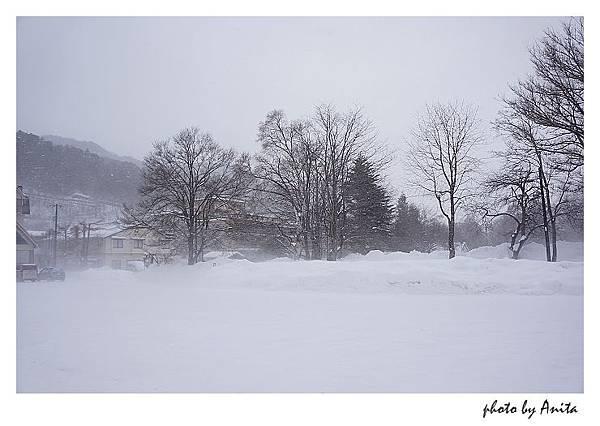 雪景很迷人