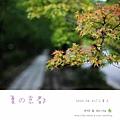2009_0801_104816.jpg