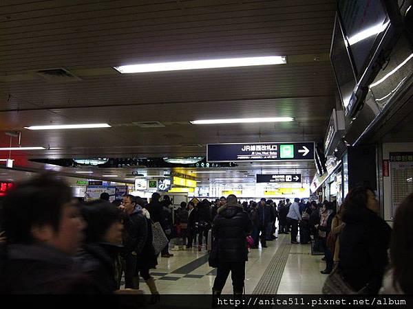 北海道好多人
