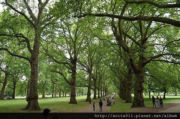 綠園-Green Park