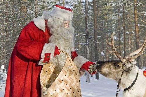 聖誕老公公和馴鹿