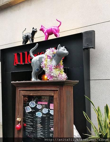 巷貓 Alleycat's