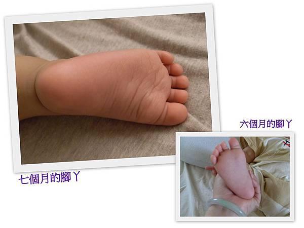 20110619[寶兒六個月]侯硐看喵咪.jpg