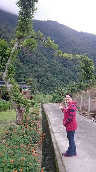 20151212-13露營@南澳那山那谷_1503.jpg