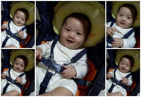 20110424寶兒四個月瑞芳TINA家+動物園一日遊4.jpg