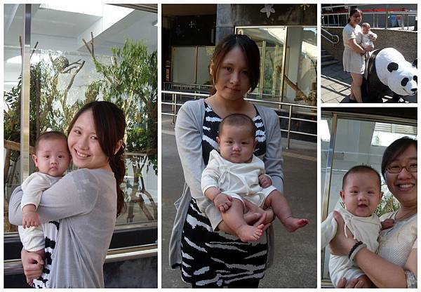 20110424寶兒四個月瑞芳TINA家+動物園一日遊3.jpg