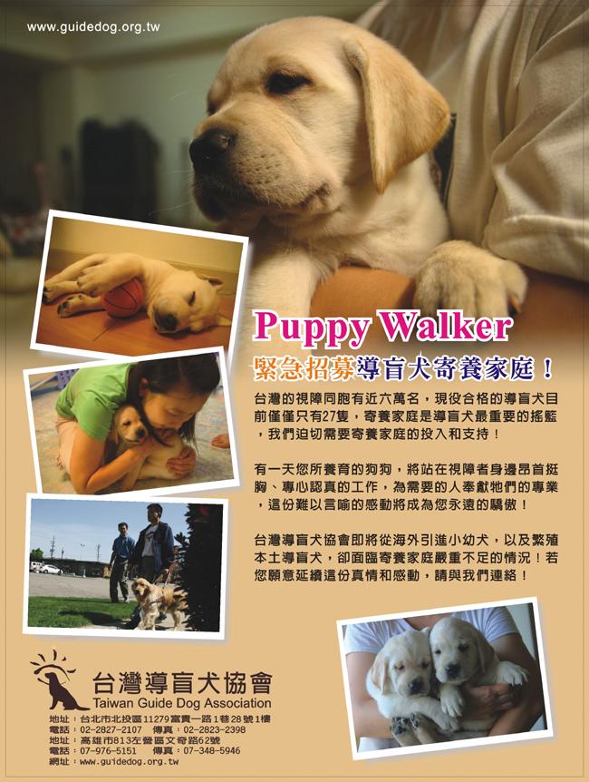 puppywalker_02.jpg