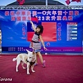 20171010-IMG_3512.jpg