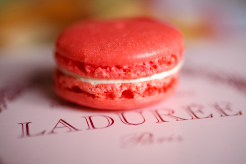 laduree-paris-rose-macaron