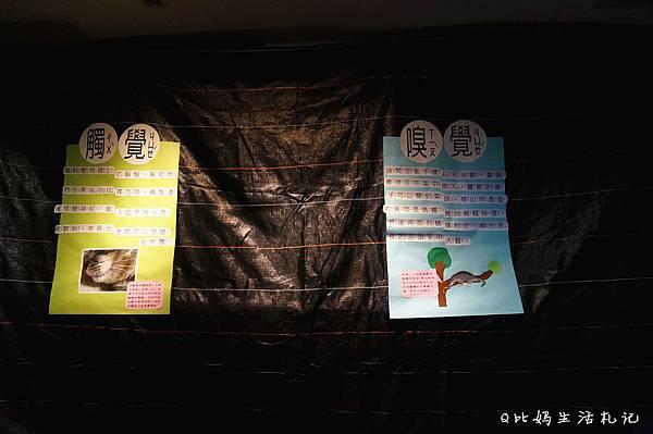 DSC09946_副本