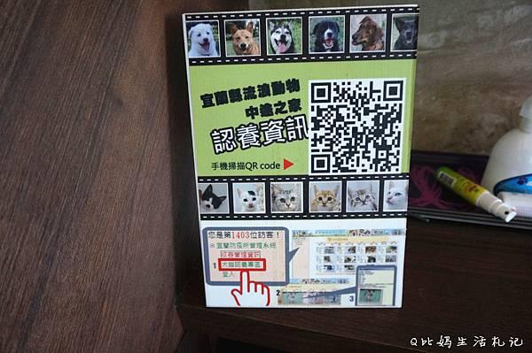 DSC05241_副本.jpg