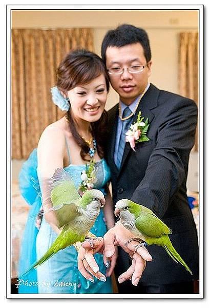 Wedding-1 (302)