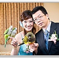 Wedding-1 (311)