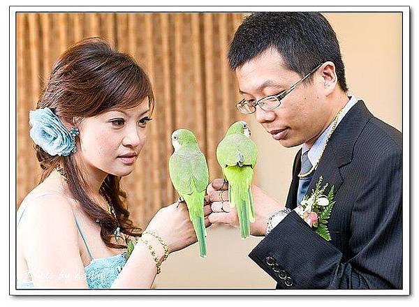 Wedding-1 (306)