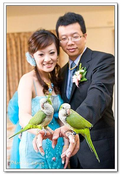 Wedding-1 (305)