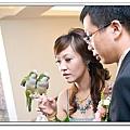 Wedding-1 (307)
