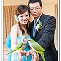 Wedding-1 (304)