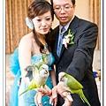 Wedding-1 (303)
