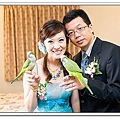Wedding-1 (299)