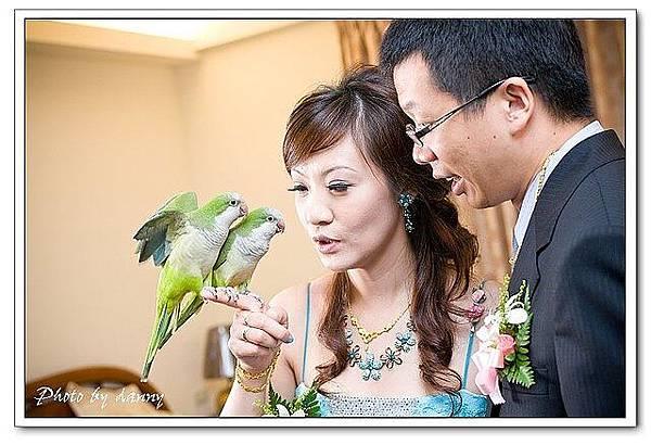 Wedding-1 (308)