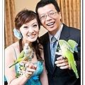 Wedding-1 (301)