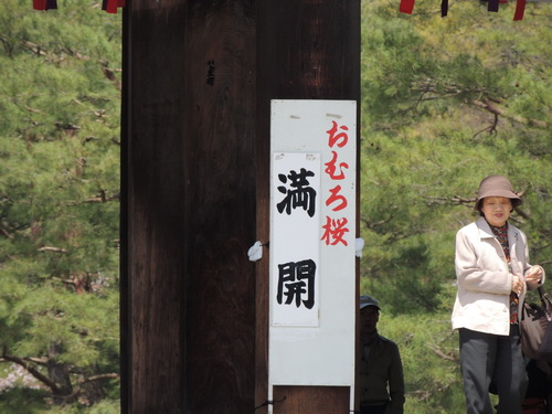 2012關西遊 230
