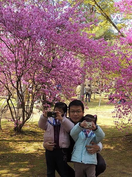 2012關西遊 305