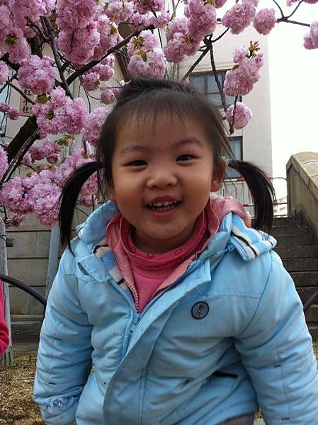 2012關西遊 628