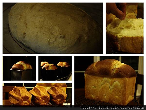 黄金香草麵包