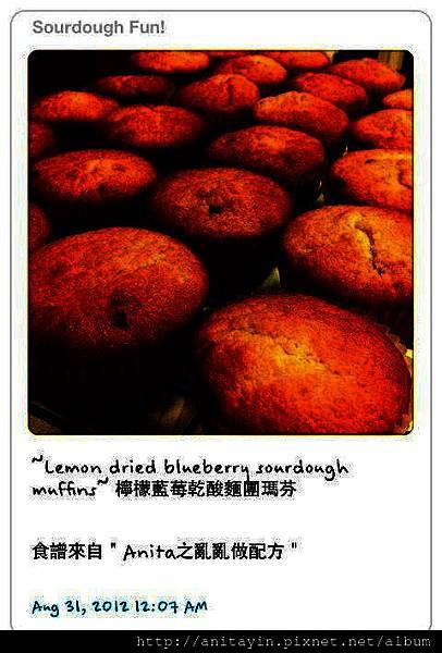 Lemon dried blueberry sourdough muffins